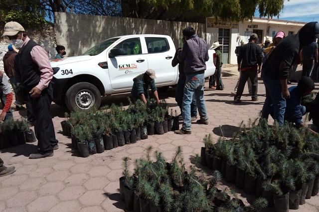 Grupo México y Granjas Carroll apoyan reforestación en Puebla