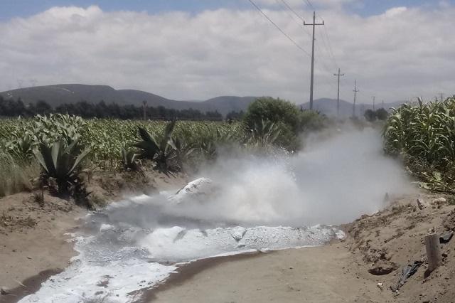 Huachicoleros provocan fuga de gas LP en Palmar de Bravo