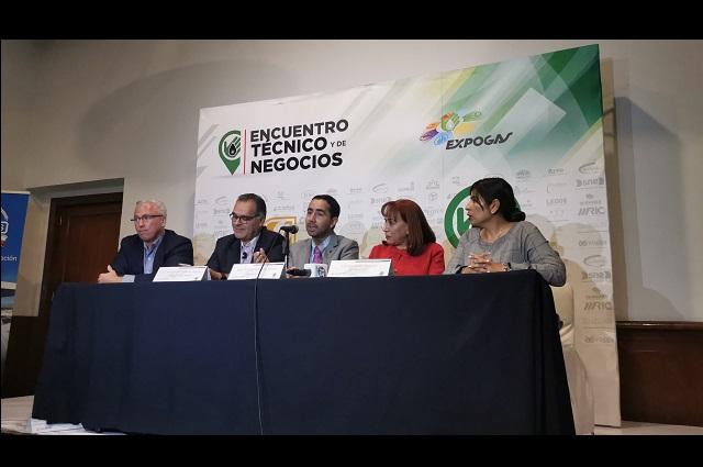 Empresarios exigen sanciones a venta de etanol en garrafas
