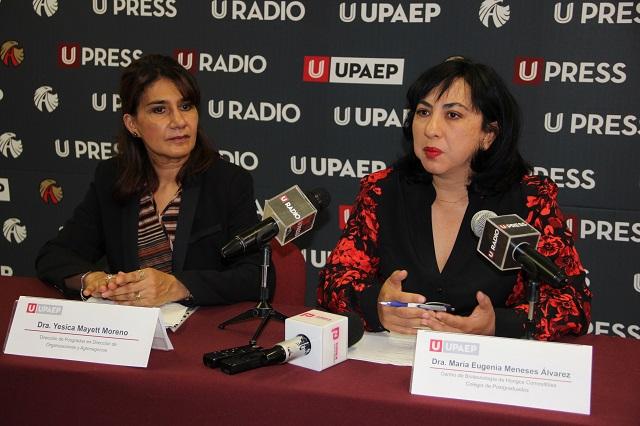 Pese a beneficios, hongos se consumen poco en Puebla
