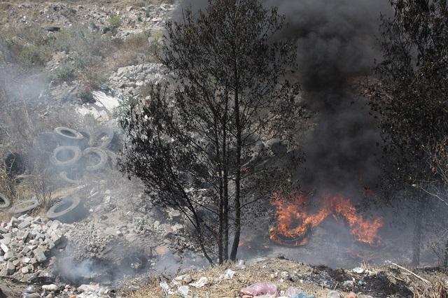 Activos, 12 incendios forestales en el estado, informa Protección Civil