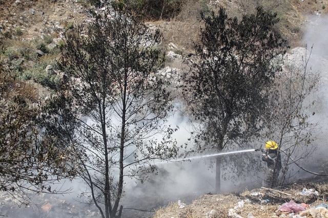 Incendio en los volcanes podría haber afectado 60 hectáreas