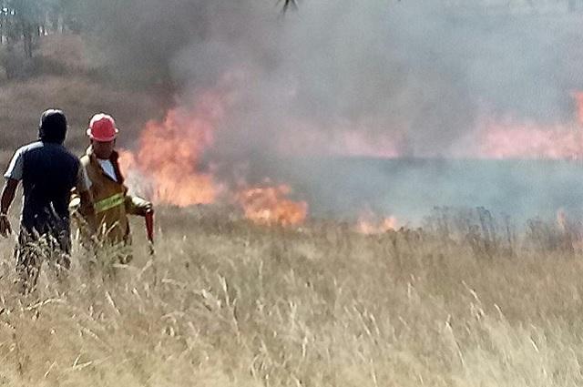 Sofoca Guardia Forestal dos incendios en el Cerro Zapotecas