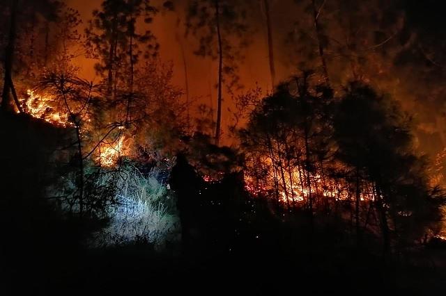 Registran incendio que afecta a 5 hectáreas en Libres
