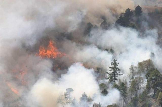 Incendio forestal consume dos hectáreas de pastizales en Ajalpan