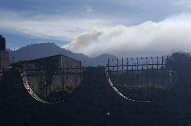 Registran incendio en zona boscosa de Tlachichuca