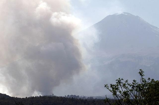 Durante 2015 se registraron en el país 3 mil  834 incendios forestales