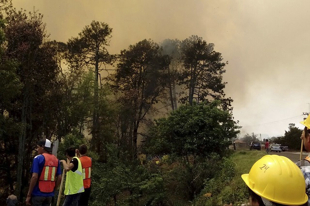 Aprueban cárcel de 10 años por causar incendios forestales