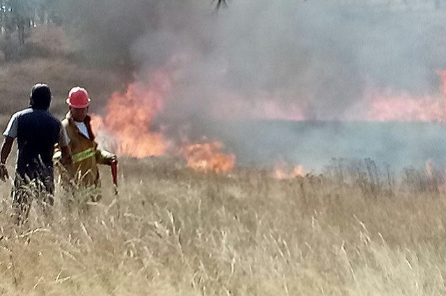 Encabeza Puebla incendios forestales al arranque de 2019