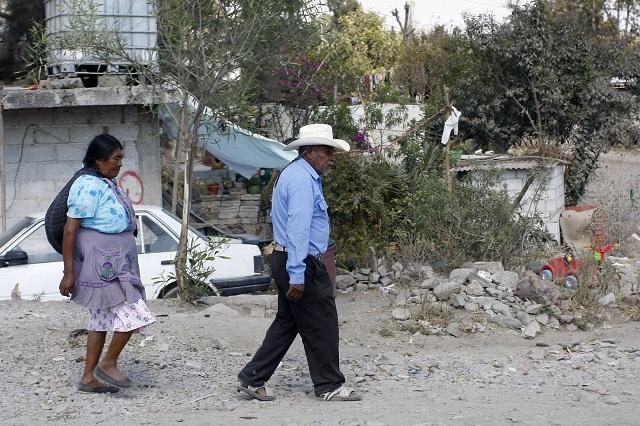 Gobierno y partidos, cómplices del despojo en pueblos indígenas: ONG