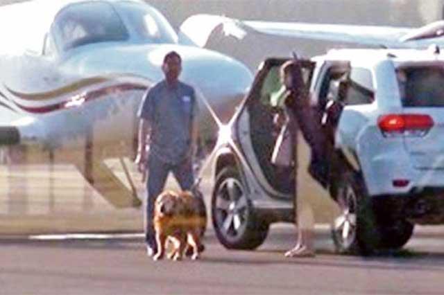 Publican foto en la que se ve que Javier Corral viajó hasta con el perro