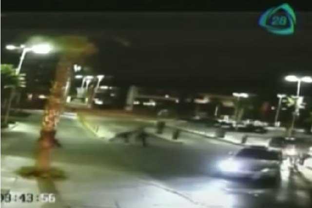 Captan en video la agresión y detención de jugadores del Necaxa