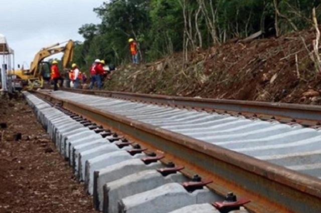 Juez suspende tramo del Tren Maya por daño ecológico