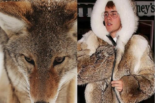 Justin Bieber enfurece a PETA por usar abrigo de piel