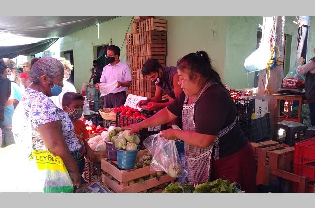 Regresa 100% de comerciantes a La Purísima sin medidas de protección