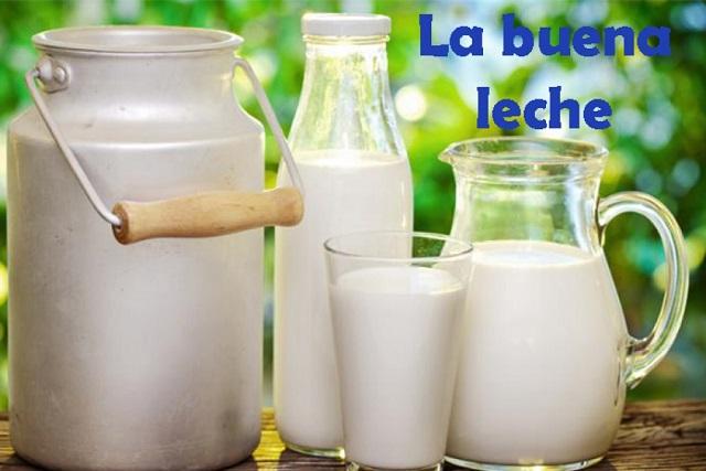 Mira los beneficios de la leche, un alimento casi perfecto…