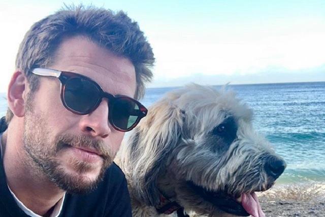 Demandan Liam Hemsworth por usar fotos sin autorización