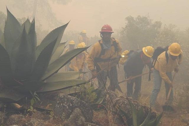 Después de tres días liquidan incendio en Zautla