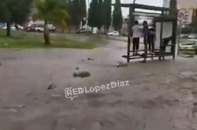 Videos: Intensa lluvia azota Puebla, inunda calles y árbol aplasta camioneta