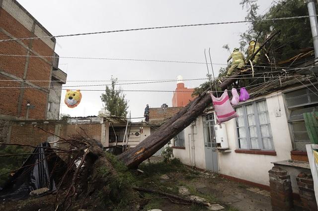 Deja lluvia inundaciones, árboles caídos y autos varados en Puebla