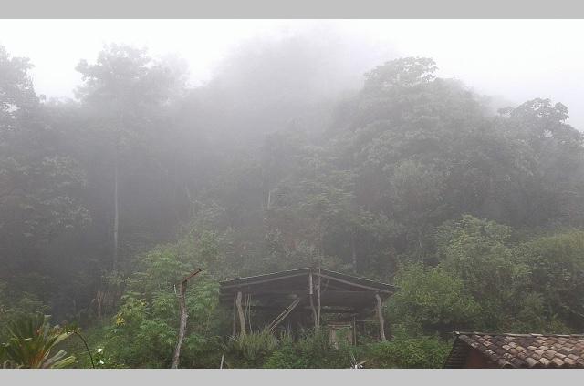 Monitorean poblaciones de riesgo en Ajalpan por lluvias