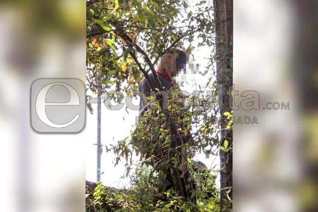 Localizan cadáver colgando de un árbol junto a la Puebla-Tlaxcala