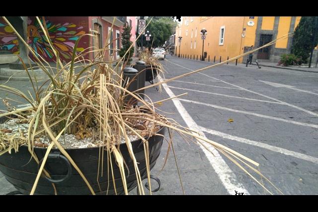 Dejan en el olvido mobiliario para reducir velocidad en el centro de Puebla