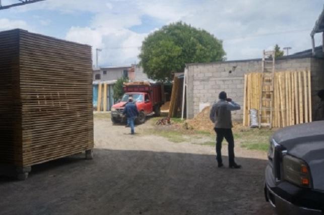 Clausura Profepa un centro de almacenamiento de madera