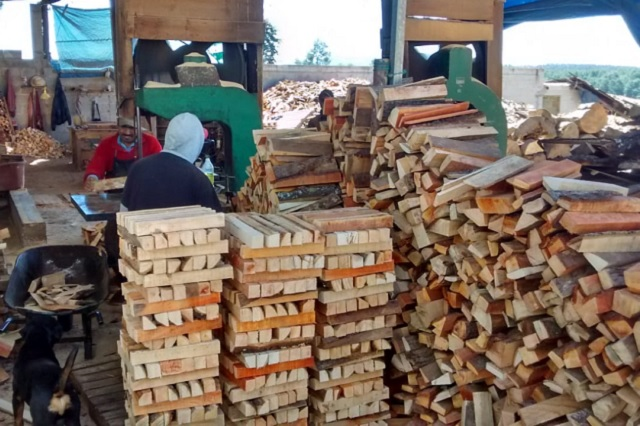 Asegura Profepa madera y máquinas en zona crítica forestal de Puebla