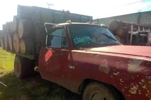 Aseguran vehículos con madera ilegal en Ahuazotepec