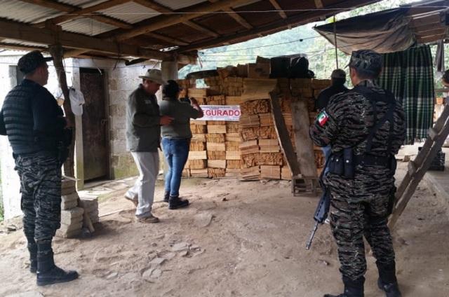 Clausuras en Zacapoaxtla por no comprobar origen legal de madera