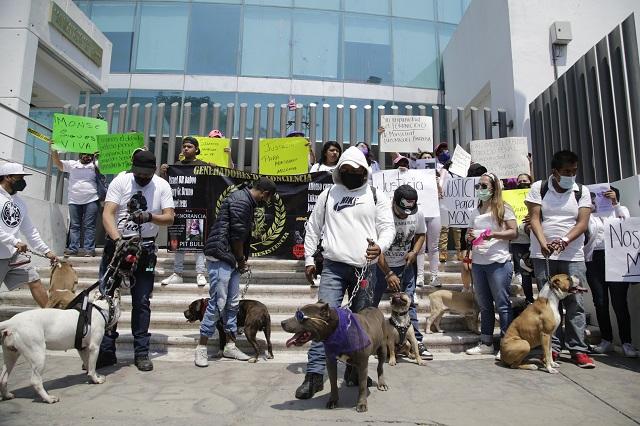 Peleas de perros en Xonaca, detrás del crimen de  Monserrat
