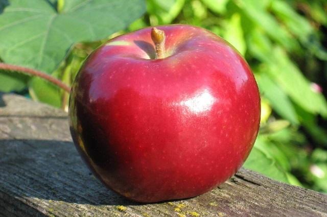 Multan a una mujer con 500 dólares por culpa de una manzana
