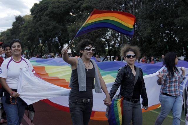 Uniones gays, discriminan a la familia, dicen universidades