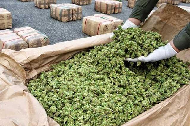 Inversionistas acechan el mercado de la marihuana en México