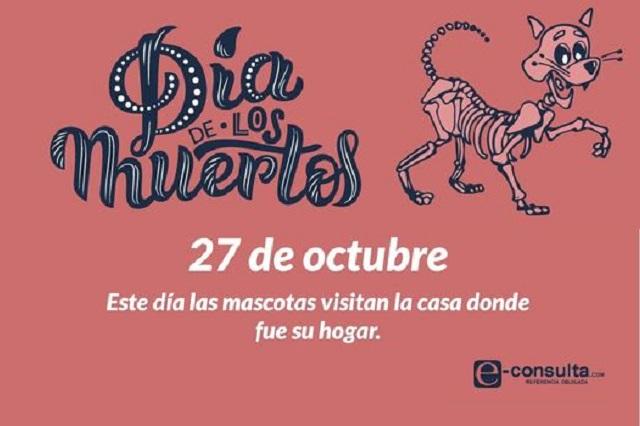 ¿Sabías que este 27 de octubre se recuerda a las mascotas en ofrendas?