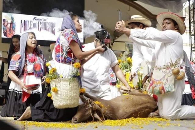 El Festival Étnico de la Matanza será virtual este 2020
