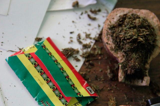 Plantean en Senado uso médico de opiáceos para mitigar dolor