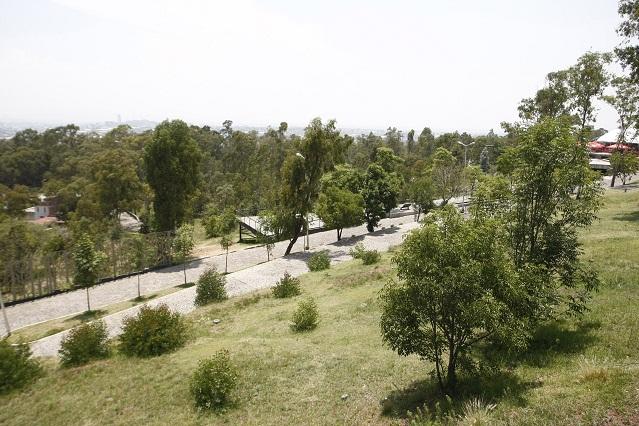 Impulsa Cemex programa de promotores ambientales en Tepeaca