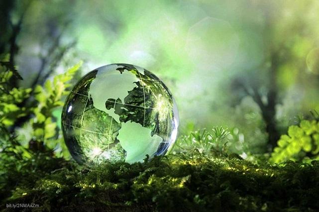 Si no actuamos pronto, daños a ecosistemas serán devastadores