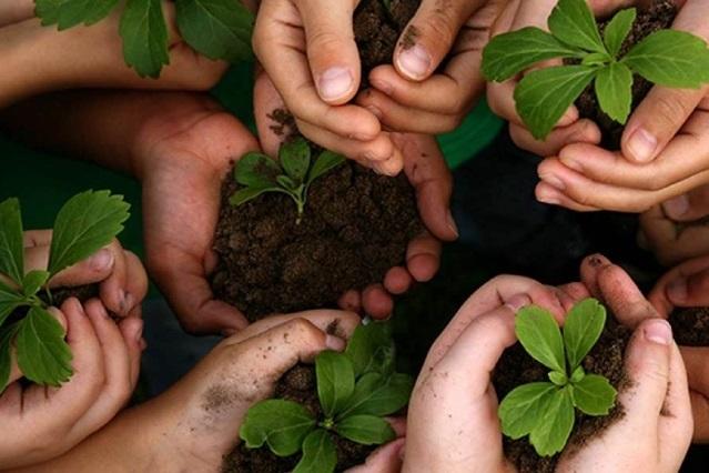 Educación ambiental, el arma contra el deterioro del planeta