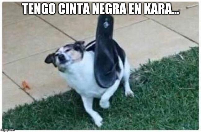 Botellazo de Carlos Trejo a Alfredo Adame ya tiene memes