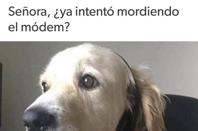 En Infinitum, memes golpean a Telmex y Telcel por falla de internet