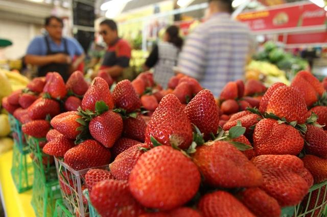 Busca municipio de Huejotzingo convertirse en exportador de fresa