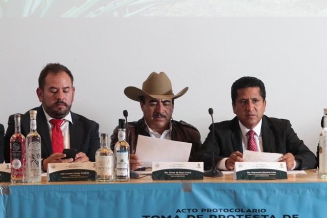 Peligra el cultivo de maguey en Puebla, alertan legisladores