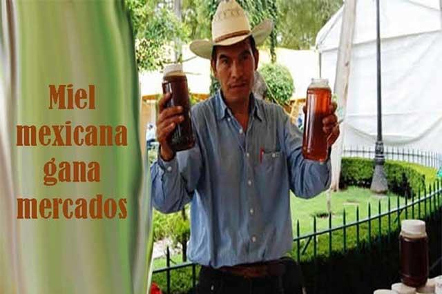 Gana mercados en el extranjero la miel mexicana