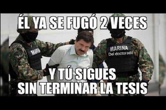 Memes del Chapo y Piojo, entre los más buscados en google