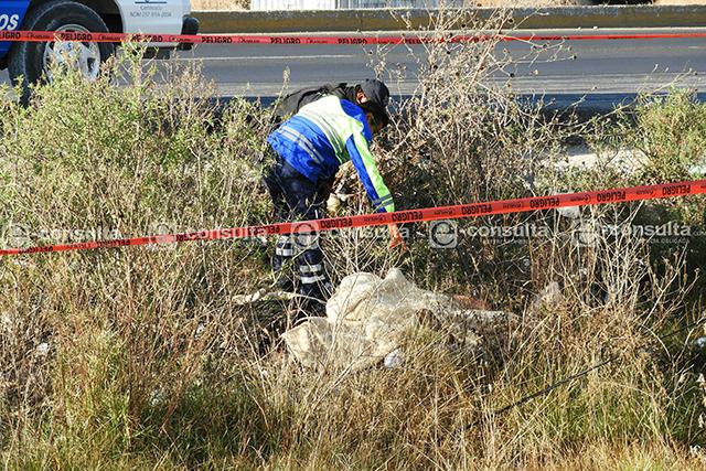 Encuentran cuerpos de dos hombres ejecutados, en Coronango