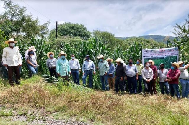 Proyecto Regional, contra la migración de las Mixtecas: Jiménez Merino