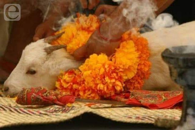 Sí habrá Festival del Mole de Caderas en Tehuacán